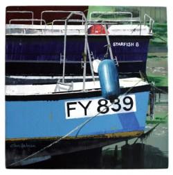star-fish-8